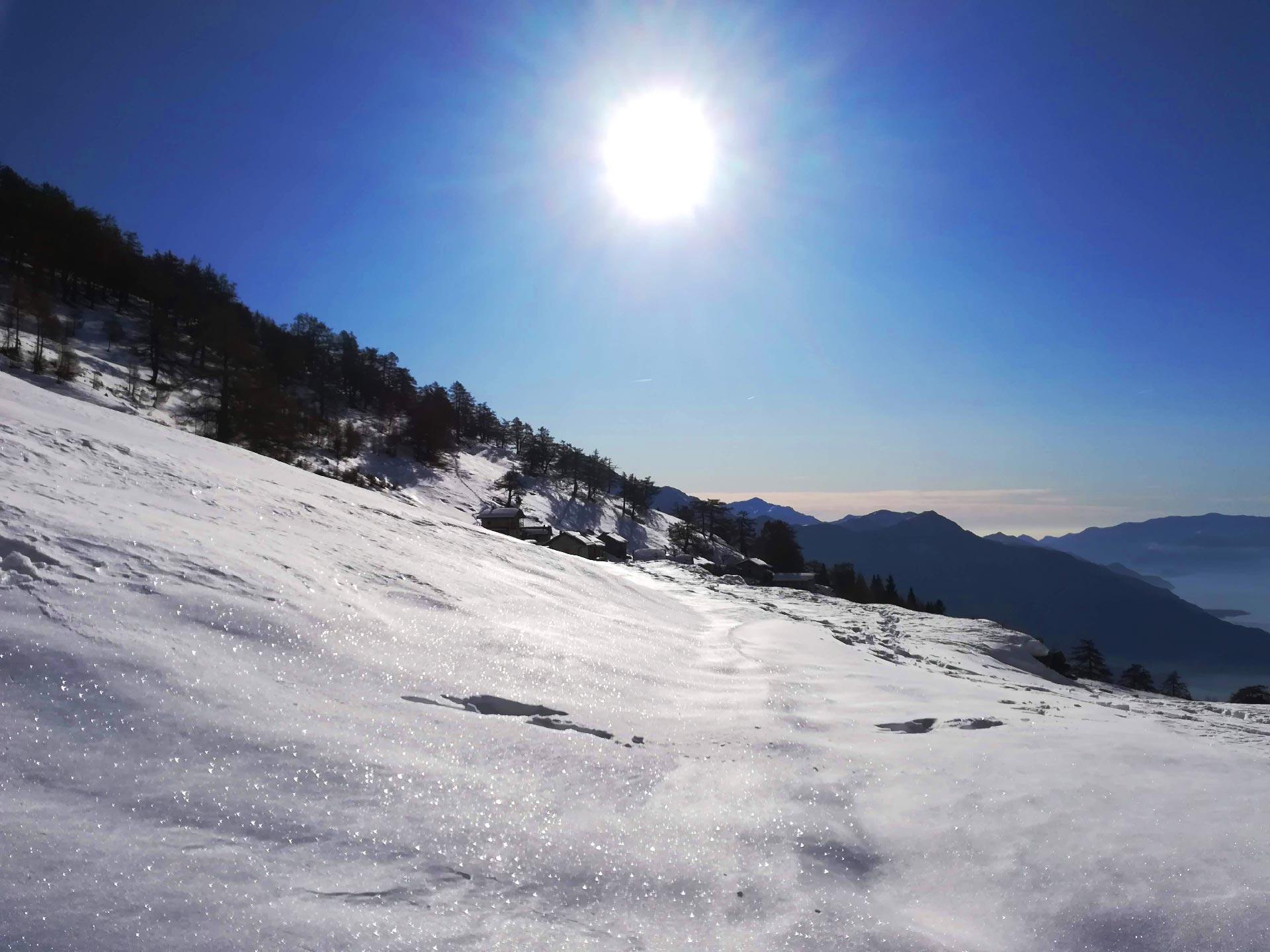 Alpe Pescedo