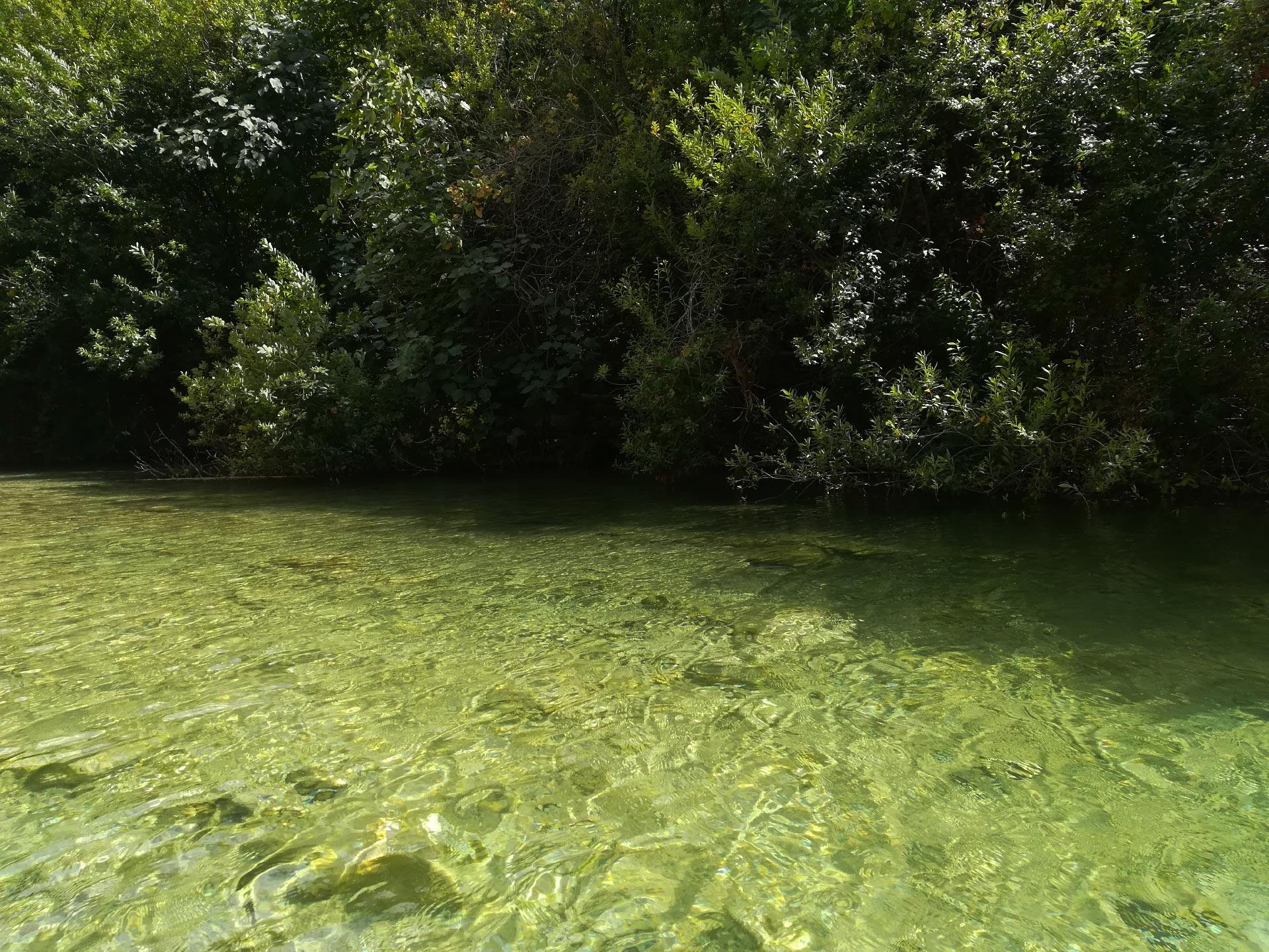 scorcio di un laghetto all'interno della Riserva Naturale di Cavagrande del Cassibile, Siracusa, Sicilia