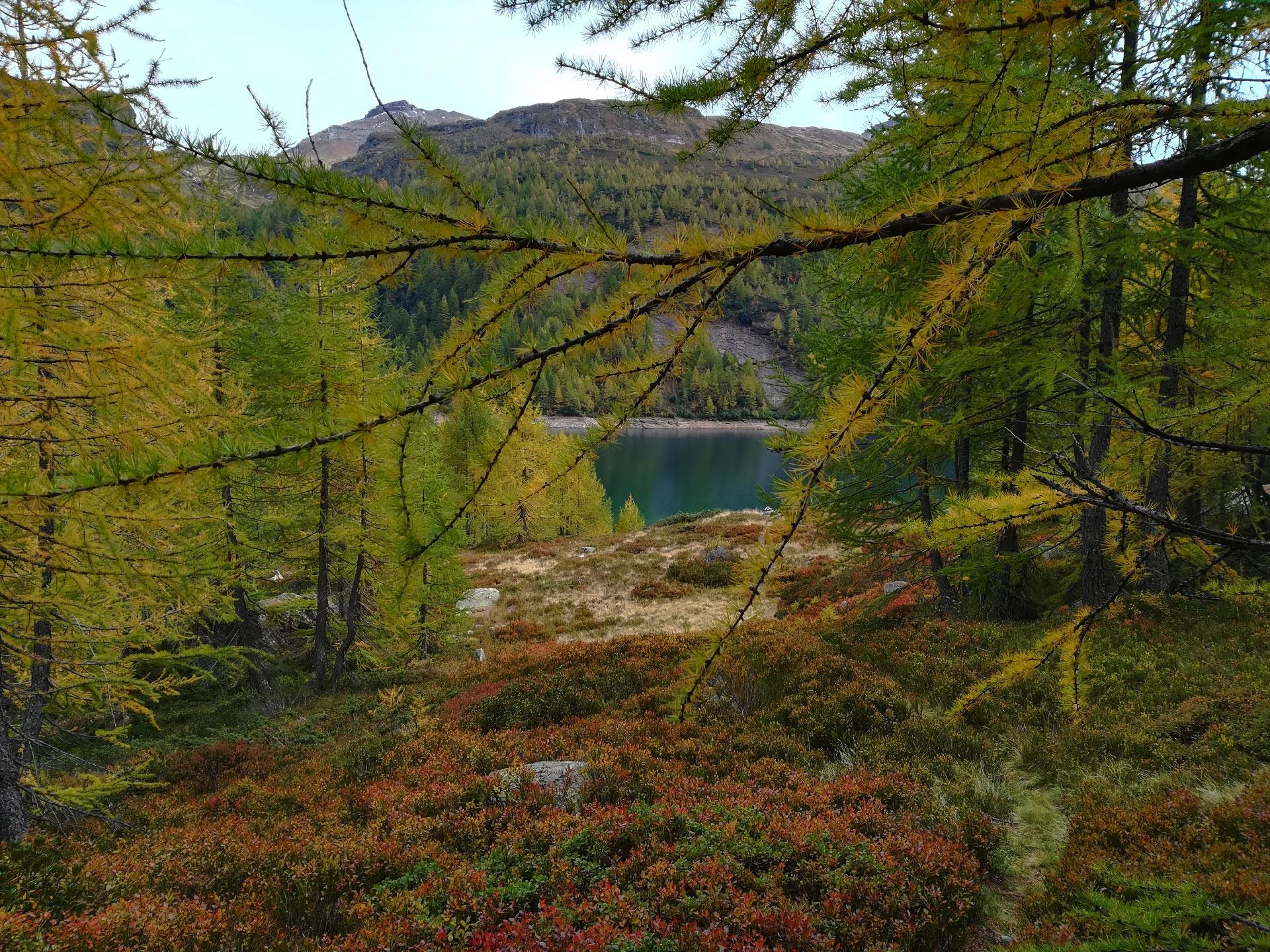 i colori del lago Devero e della natura circostante, Verbania, Piemonte