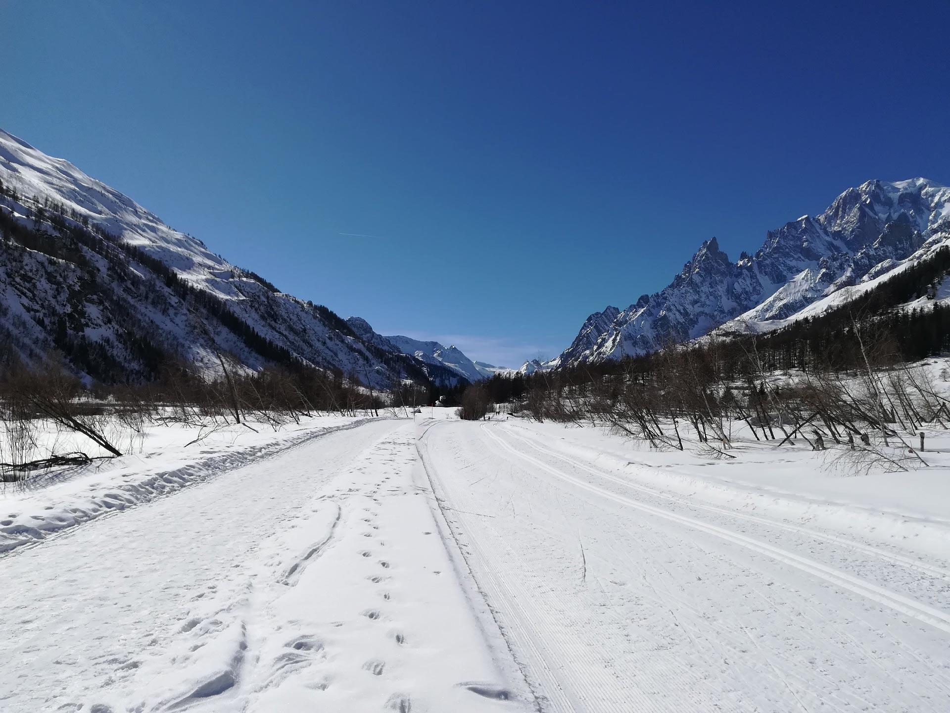 il panorama della Val Ferret con le montagne circostanti, Courmayeur, Valle d'Aosta