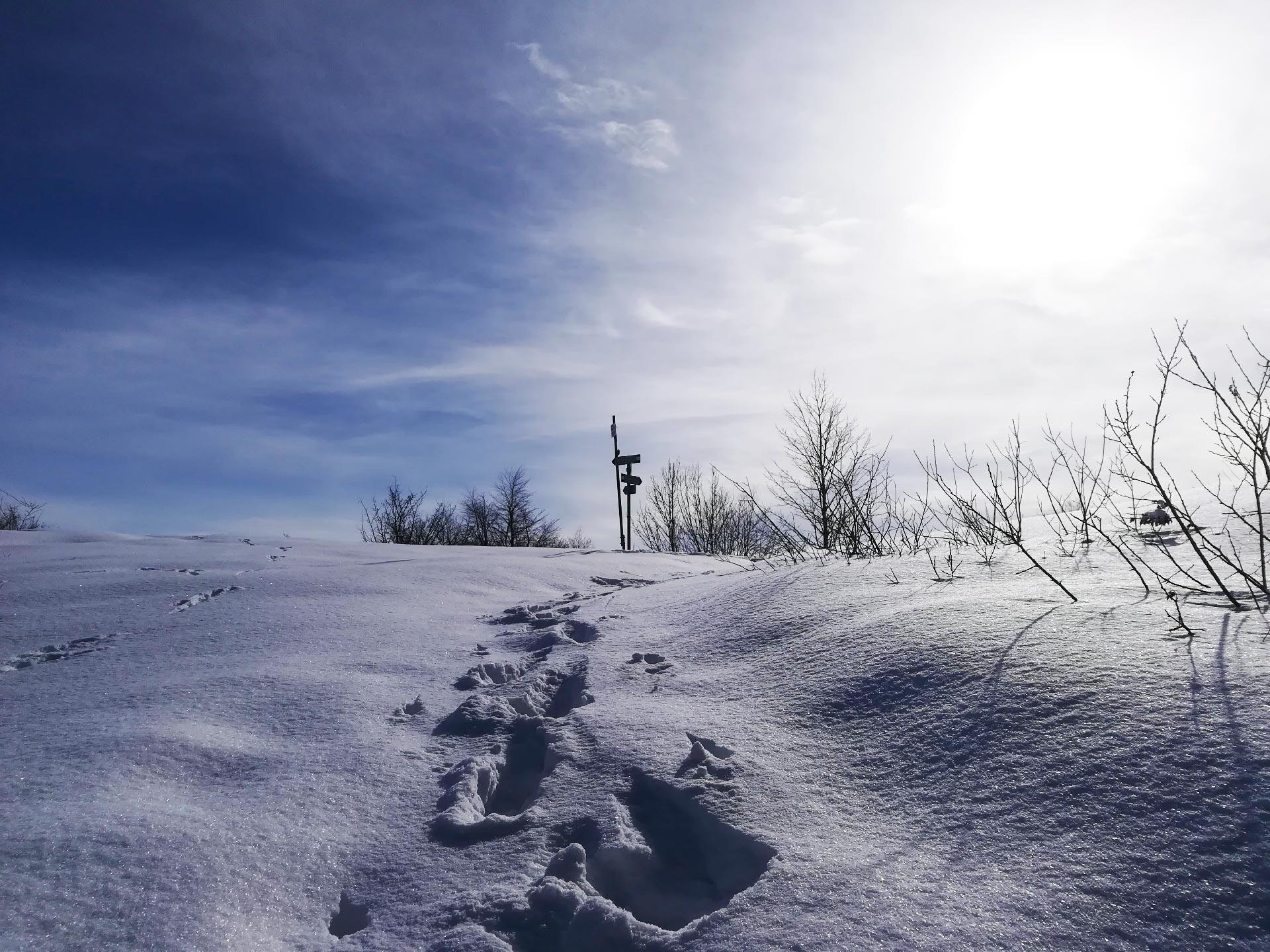 scorcio di sentiero innevato che porta verso Morterone, Valsassina, Lombardia